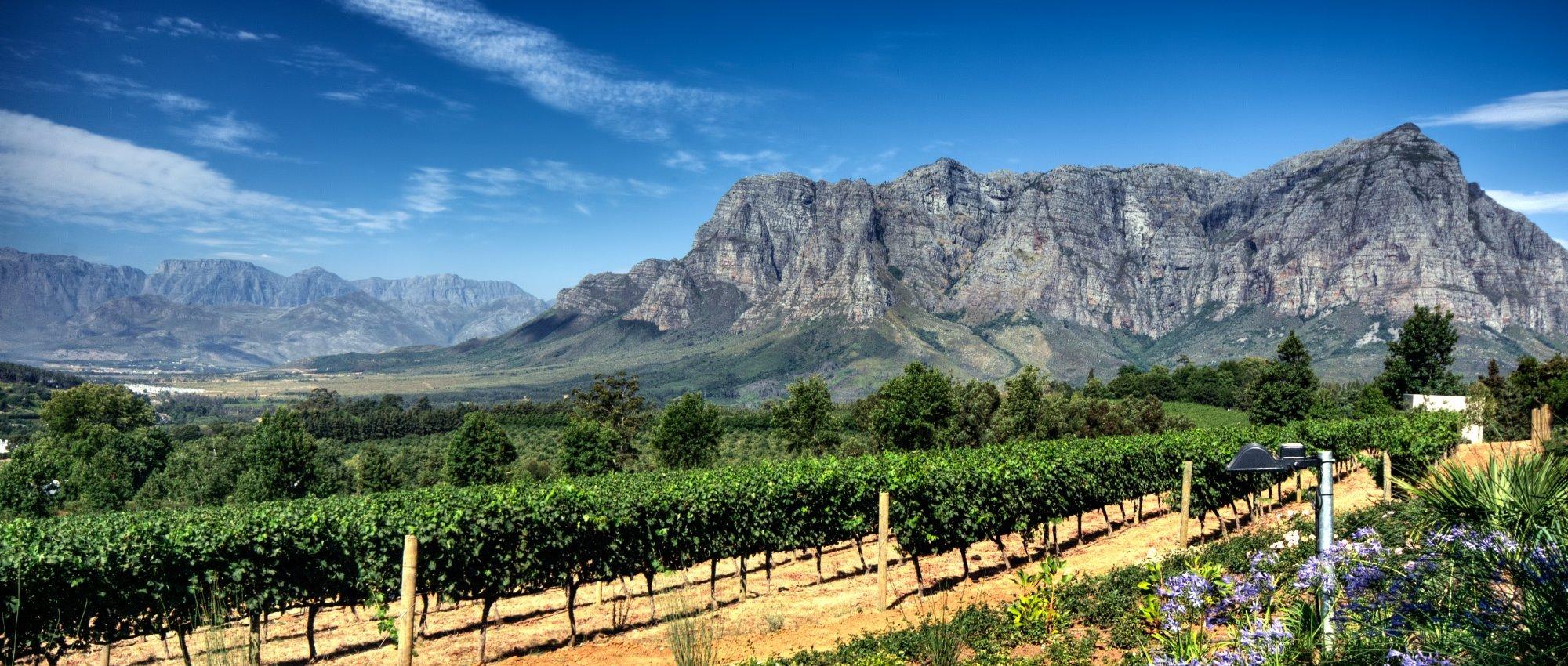 Best Winery Tours In Spain