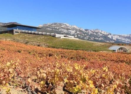 Baigorri winery