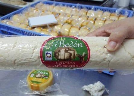 Bedon