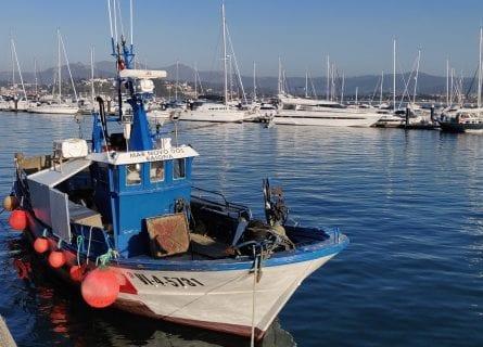Baiona port