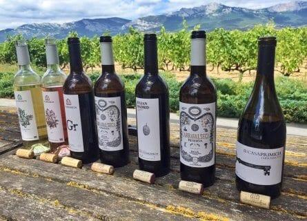 Casa Primicia wine tasting