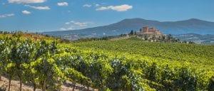 la-rioja-wine-tours