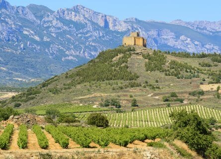 Scenic Rioja wine country