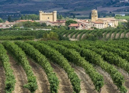 Sajazarra, in the heart of La Rioja wine country