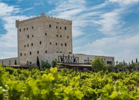 Wine Hotel, Pago de Cirsus