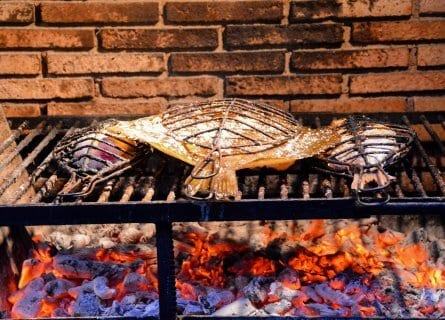 Cooking fish on grill, Getaria