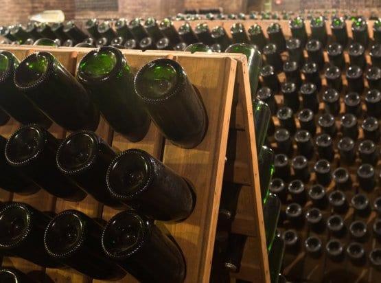 Penedes Wine Tour
