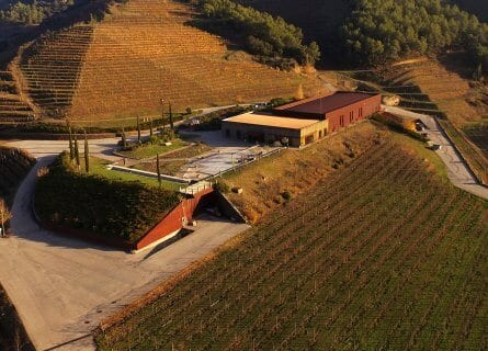 Perinet Winery