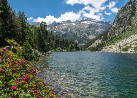 pyrenees - aigüestortes