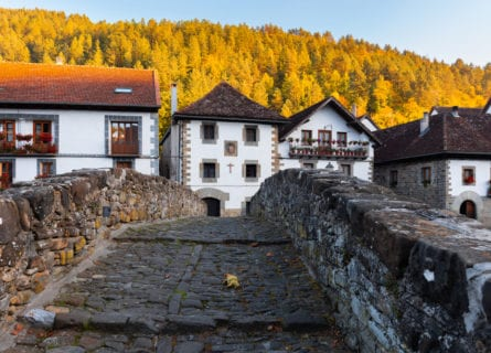 pyrenees - ochagavia