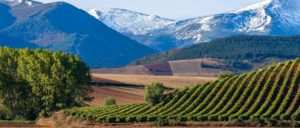 rioja-alta - rioja-alta-wine-region-1
