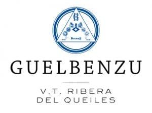 Bodegas Guelbenzu logo
